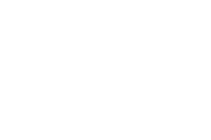 The District at Deerfield Logo